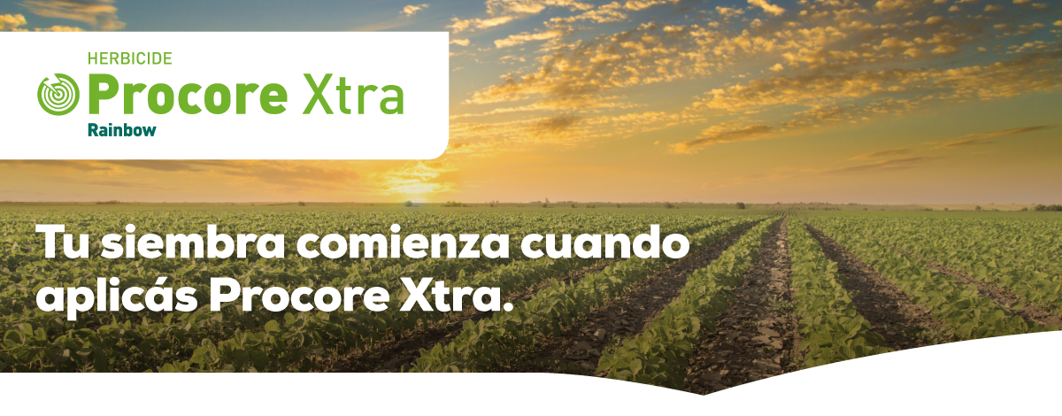 Paraguay | Producto Procore Xtra